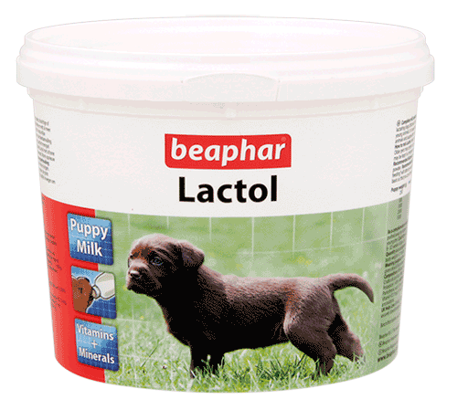 lactol milk for young puppies