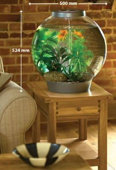 Biorb 60 Litre Coldwater With Standard LED Light