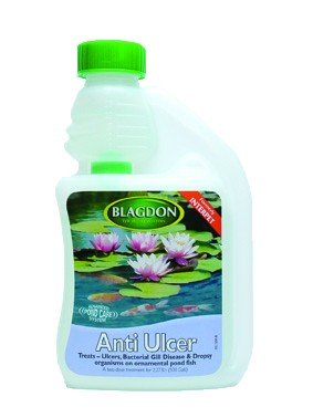 Interpet Anti Ulcer 250ml Treatment For Ponds