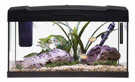 Marina 54 Litre Aquarium Kit - Black