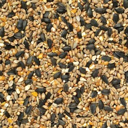 Johnston & Jeff Wild Bird Seed 20Kg Collect in-store only.