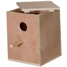 Nest Box Love Bird