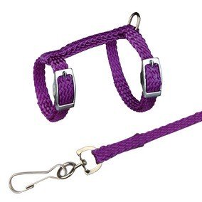 Trixie Rat and Ferret Harness & Lead Set
