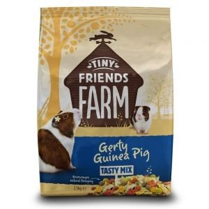 Gerty Guinea Pig Tasty Mix 850g