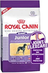 royal canin giant junior complete food 15kg. Black Bedroom Furniture Sets. Home Design Ideas