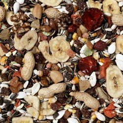 Johnston & Jeff Parrot Fruit Mix 12.75Kg