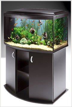 Ferplast Cayman professional 80 is een betaalbaar aquarium.